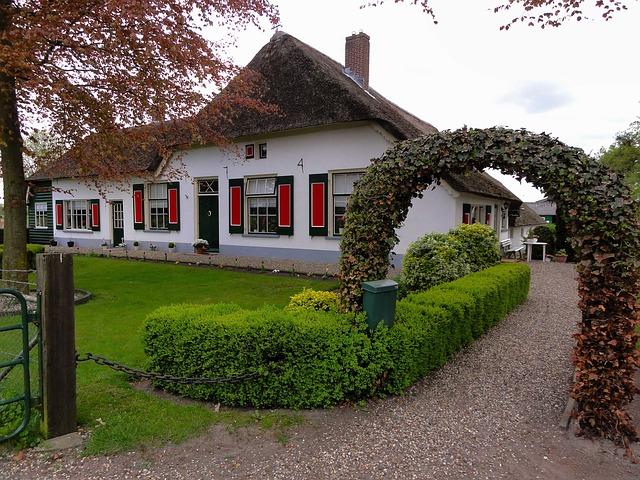 upravená zahrada u domu.jpg