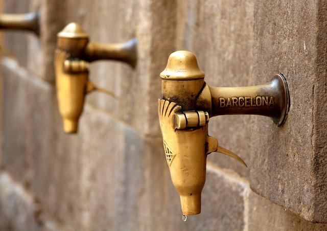 kohoutky v Barceloně