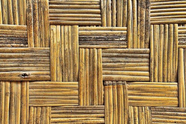 Zázrak jménem Bambus